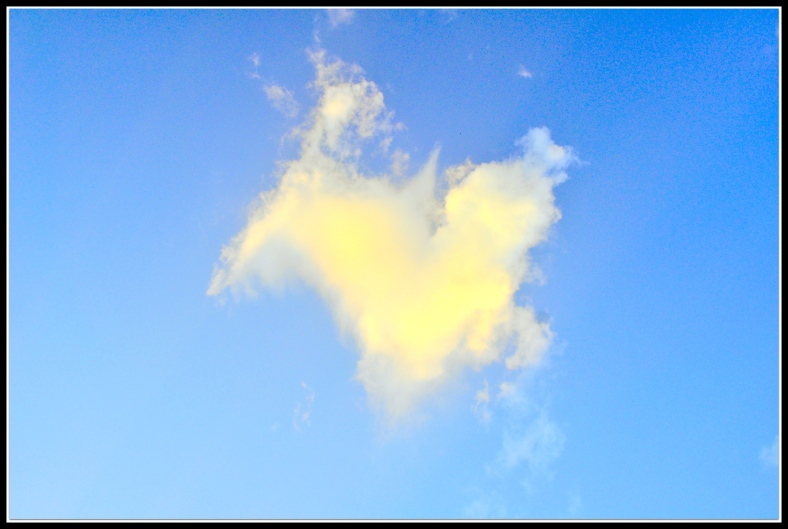 WHITE Heart shaped cloud we saw while taking a walk to get ice cream